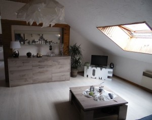 confortable-appartement-4