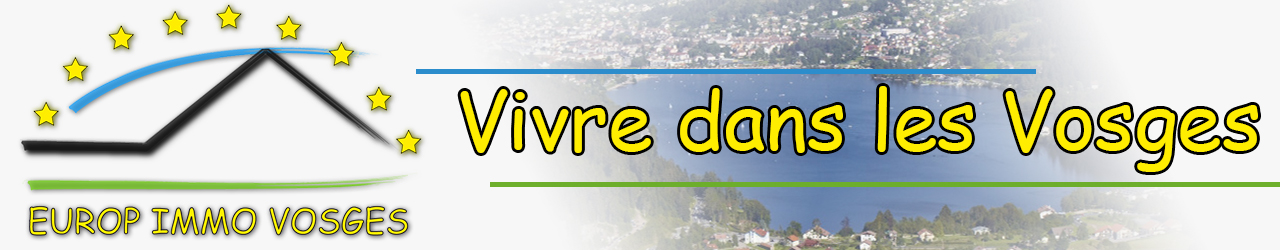 Europe Immo Vosges - Secteur Gérardmer et environs / Haute Meurthe - Chalet ou ferme pour vivre dans les Vosges !